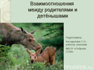 Взаимоотношения между родителями и детёнышами Подготовила:Косырькова С.Н., учите