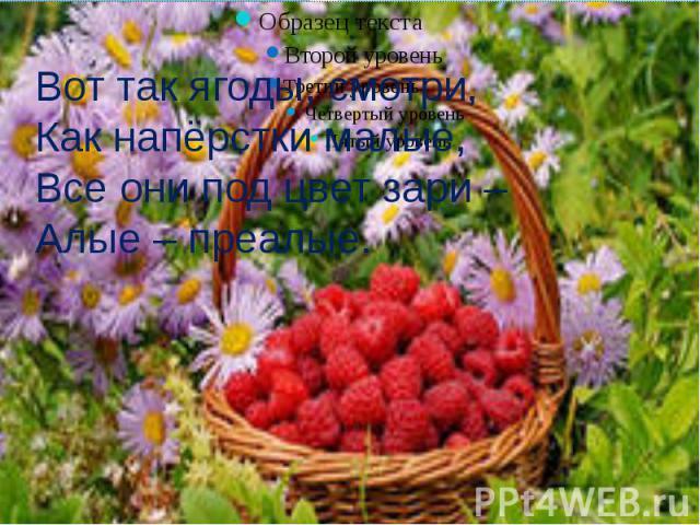 Вот так ягоды, смотри,Как напёрстки малые,Все они под цвет зари –Алые – преалые.