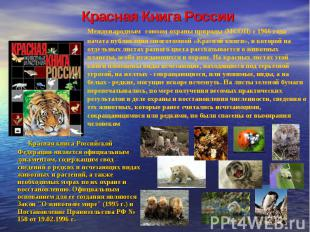 Красная Книга России Международным союзом охраны природы (МСОП) с 1966 года нача