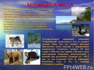 ЗАПОВЕДНЫЕ МЕСТА В 1916 году именно 11 января был образован первый российский за