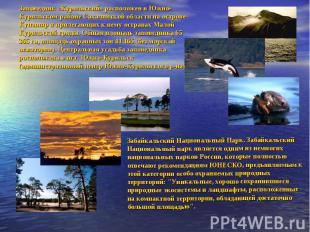 Заповедник «Курильский» расположен в Южно-Курильском районе Сахалинской области