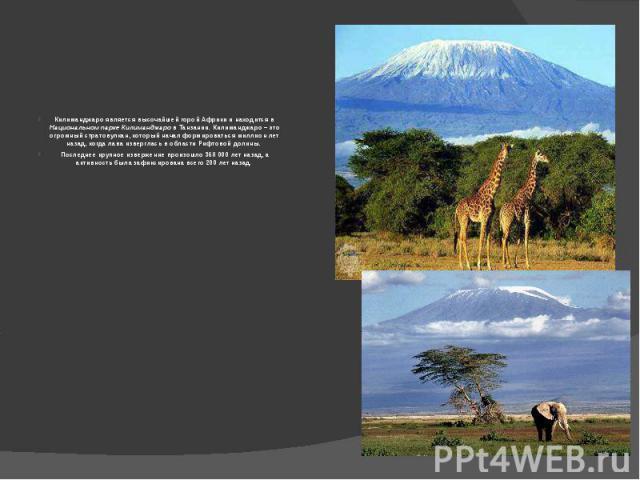 Килиманджаро является высочайшей горой Африки и находится в Национальном парке Килиманджаро в Танзании. Килиманджаро – это огромный стратовулкан, который начал формироваться миллион лет назад, когда лава изверглась в области Рифтовой долины. Последн…