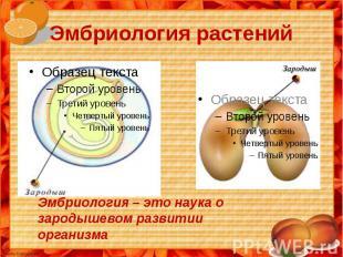 Эмбриология растений Эмбриология – это наука о зародышевом развитии организма