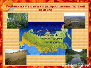 Геоботаника – это наука о распространении растений на Земле