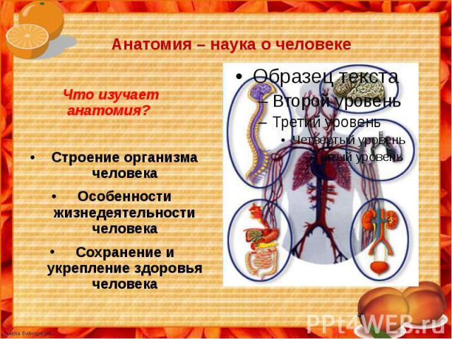 Анатомия – наука о человеке Что изучает анатомия?Строение организма человекаОсобенности жизнедеятельности человекаСохранение и укрепление здоровья человека