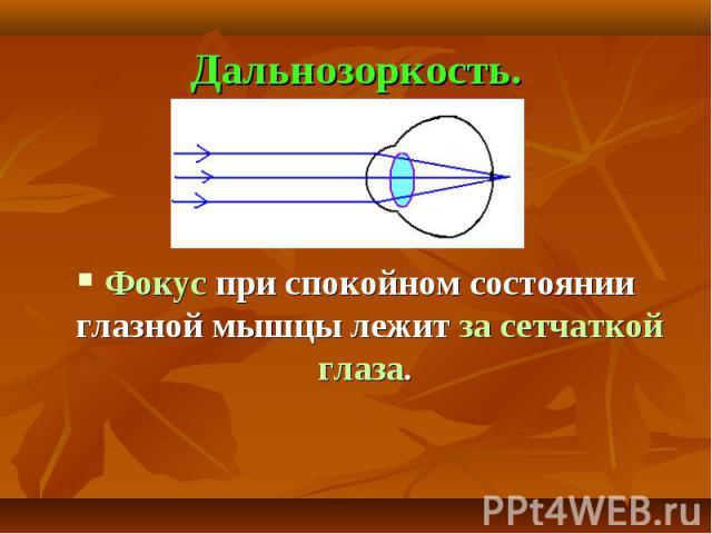 Дальнозоркость. Фокус при спокойном состоянии глазной мышцы лежит за сетчаткой глаза.