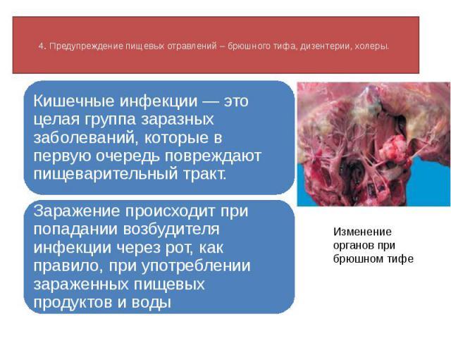 4. Предупреждение пищевых отравлений – брюшного тифа, дизентерии, холеры. Кишечные инфекции — это целая группа заразных заболеваний, которые в первую очередь повреждают пищеварительный тракт. Заражение происходит при попадании возбудителя инфекции ч…