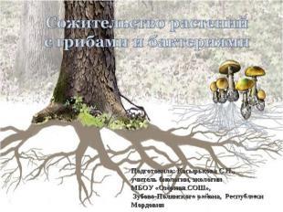 Сожительство растений с грибами и бактериями Подготовила: Косырькова С.Н.,учител