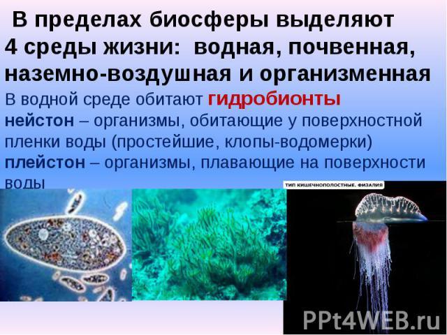 В пределах биосферы выделяют 4 среды жизни: водная, почвенная, наземно-воздушная и организменнаяВ водной среде обитают гидробионтынейстон – организмы, обитающие у поверхностной пленки воды (простейшие, клопы-водомерки)плейстон – организмы, плавающие…