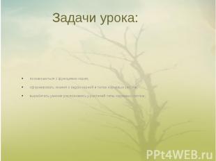 Задачи урока: познакомиться с функциями корня;сформировать знания о видах корней