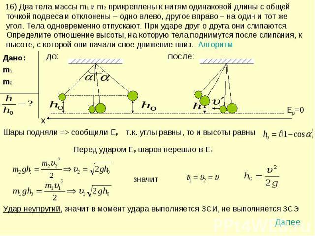 16) Два тела массы m1 и m2 прикреплены к нитям одинаковой длины с общей точкой подвеса и отклонены – одно влево, другое вправо – на один и тот же угол. Тела одновременно отпускают. При ударе друг о друга они слипаются. Определите отношение высоты, н…