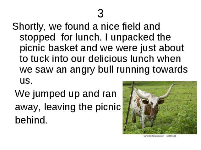 3 Shortly, we found a nice field and stopped for lunch. I unpacked the picnic basket and we were just about to tuck into our delicious lunch when we saw an angry bull running towards us. We jumped up and ran away, leaving the picnic behind.