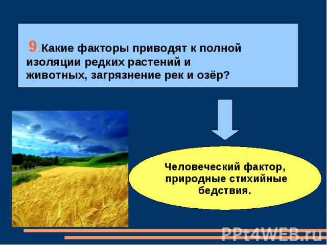 9.Какие факторы приводят к полной изоляции редких растений и животных, загрязнение рек и озёр?Человеческий фактор, природные стихийные бедствия.
