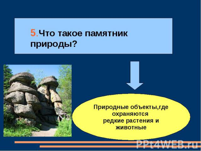 5.Что такое памятник природы? Природные объекты,где охраняются редкие растения и животные