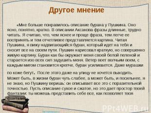 Другое мнение «Мне больше понравилось описание бурана у Пушкина. Оно ясно, понят