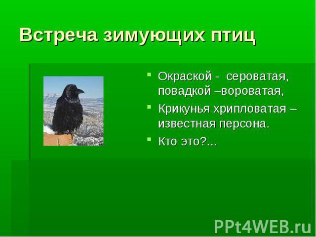 Встреча зимующих птиц Окраской - сероватая, повадкой –вороватая, Крикунья хрипловатая – известная персона.Кто это?...