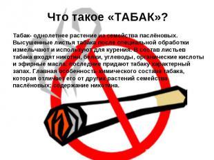 Что такое «ТАБАК»? Табак- однолетнее растение из семейства паслёновых. Высушенны