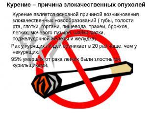 Курение – причина злокачественных опухолей Курение является основной причиной во
