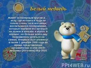 Белый медведь Живёт за полярным кругом в иглу, где из снега и льда не только сте