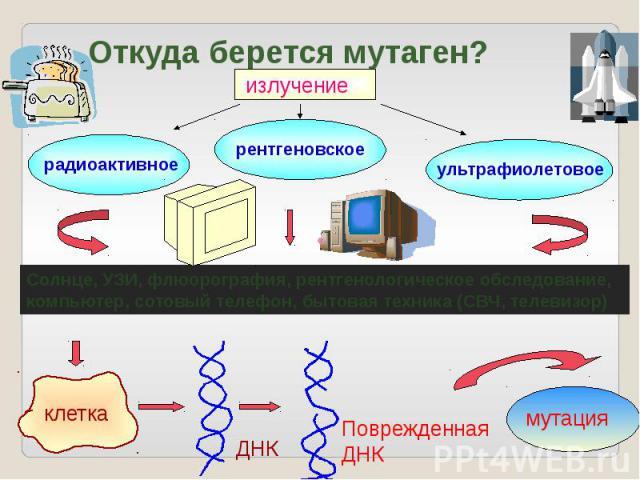 Откуда берется мутаген?