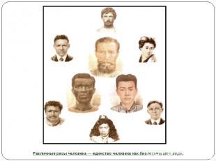 Различные расы человека — единство человека как биологического вида.