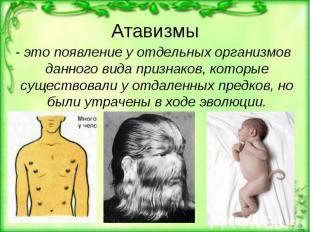 Атавизмы - это появление у отдельных организмов данного вида признаков, которые