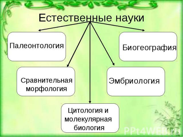 Естественные науки