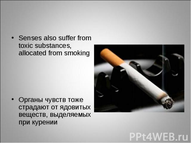 Senses also suffer from toxic substances, allocated from smokingОрганы чувств тоже страдают от ядовитых веществ, выделяемых при курении