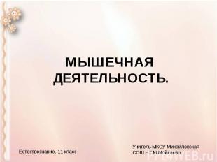 МЫШЕЧНАЯ ДЕЯТЕЛЬНОСТЬ.