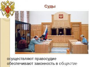 Суды осуществляют правосудие обеспечивают законность в обществе