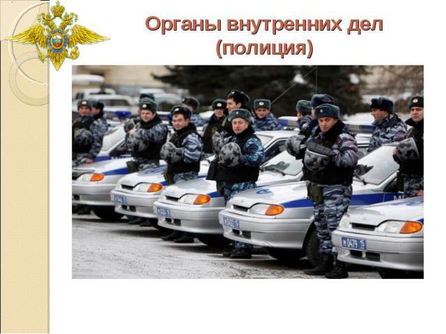 Органы внутренних дел(полиция)