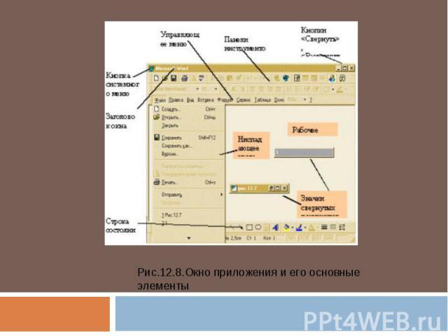 Рис.12.8.Окно приложения и его основные элементы