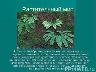 Растительный мир Очень своеобразны дальневосточные смешанные и широколиственные