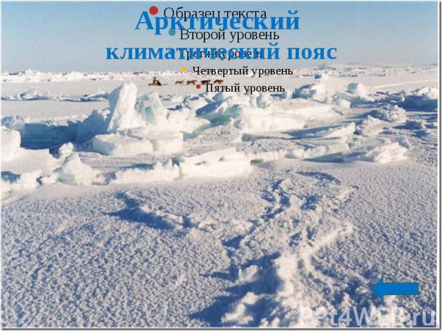 Арктический климатический пояс