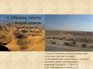 С высоты птичьего полёта полупустыня и пустыня похожи на ковёр с затейливым крап