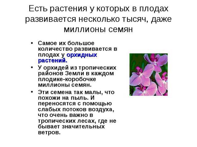 Есть растения у которых в плодах развивается несколько тысяч, даже миллионы семян Самое их большое количество развивается в плодах у орхидных растений.У орхидей из тропических районов Земли в каждом плодике-коробочке миллионы семян. Эти семена так м…