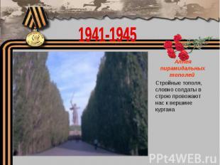1941-1945Аллея пирамидальных тополей Стройные тополя, словно солдаты в строю про