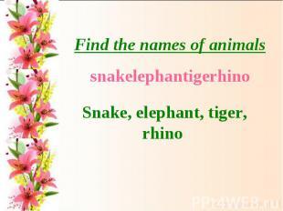 Find the names of animalssnakelephantigerhinoSnake, elephant, tiger, rhino