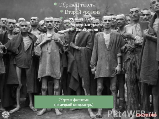 Жертвы фашизма(немецкий концлагерь)