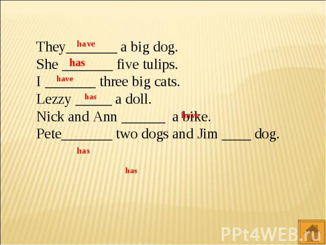 They_______ a big dog.She _______ five tulips.I _______ three big cats.Lezzy _____ a doll.Nick and Ann ______ a bike.Pete_______ two dogs and Jim ____ dog.