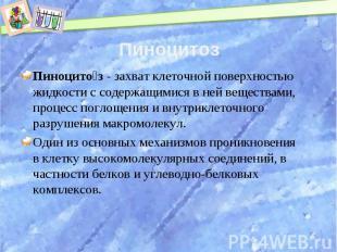 Пиноцитоз Пиноцитоз- захват клеточной поверхностью жидкости с содержащимися в н