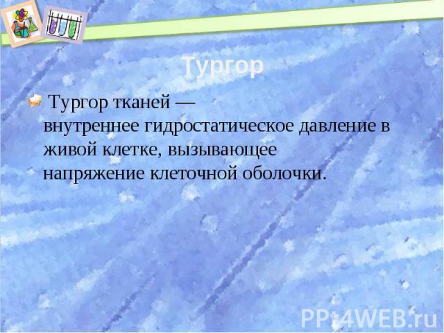 Тургор Тургор тканей— внутреннеегидростатическое давлениев живойклетке, вызывающее напряжениеклеточной оболочки.