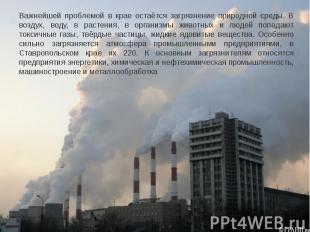 Важнейшей проблемой в крае остаётся загрязнение природной среды. В воздух, воду,