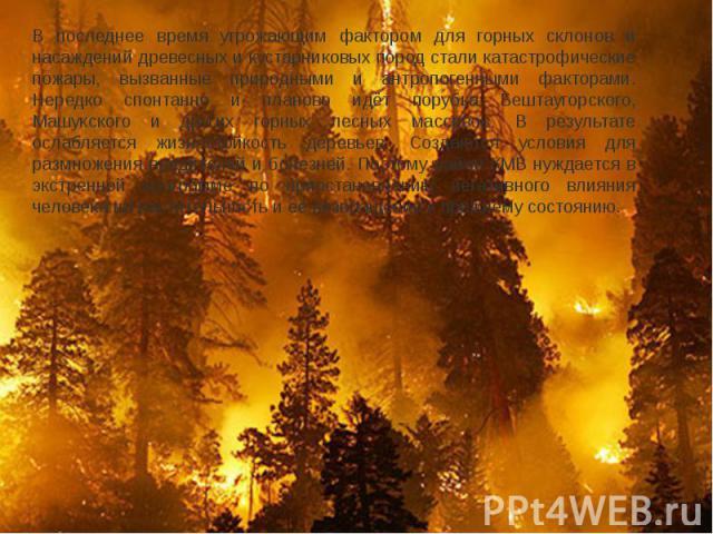 В последнее время угрожающим фактором для горных склонов и насаждений древесных и кустарниковых пород стали катастрофические пожары, вызванные природными и антропогенными факторами. Нередко спонтанно и планово идёт порубка Бештаугорского, Машукского…
