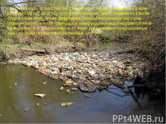 Проблема воды остро стоит на Ставрополье. На душу населения в крае приходится3 тыс.м3 в год – это в 9 раз меньше, чем в среднем по России. Вода в реках края сильно загрязнена. Отходы животноводства стали главным загрязнителем грунтовых и поверхностн…