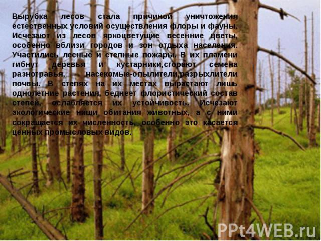 Вырубка лесов стала причиной уничтожения естественных условий осуществления флоры и фауны. Исчезают из лесов яркоцветущие весенние цветы, особенно вблизи городов и зон отдыха населения. Участились лесные и степные пожары. В их пламени гибнут деревья…