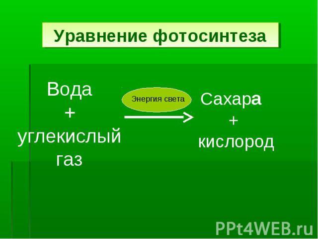 Уравнение фотосинтеза Вода+углекислый газСахара + кислород