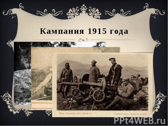 Кампания 1915 года