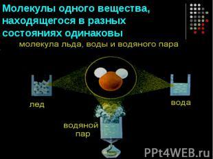 Молекулы одного вещества, находящегося в разных состояниях одинаковы