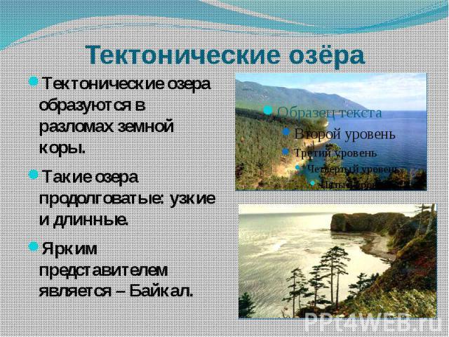 Тектонические озёра Тектонические озера образуются в разломах земной коры.Такие озера продолговатые: узкие и длинные.Ярким представителем является – Байкал.